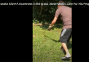 Snake Alive! A movement in the grass. Steve Martin, Love For His People