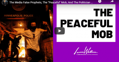 "The Media False Prophets, The ""Peaceful"" Mob, And The Politician Generals 